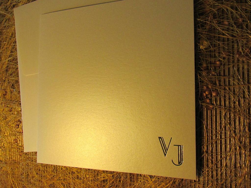 10.-Virginia-Partecipazione